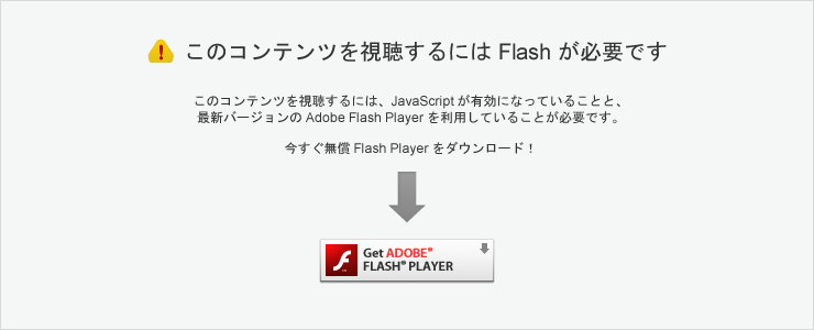 Adobe Flash Player ����